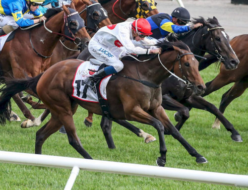 CARNIVAL STAKES SUCCESS FOR TYCOON