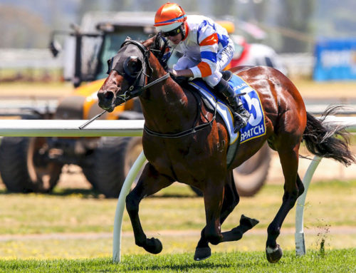 WRITTEN TYCOON DESPATCHED G1 SUCCESS