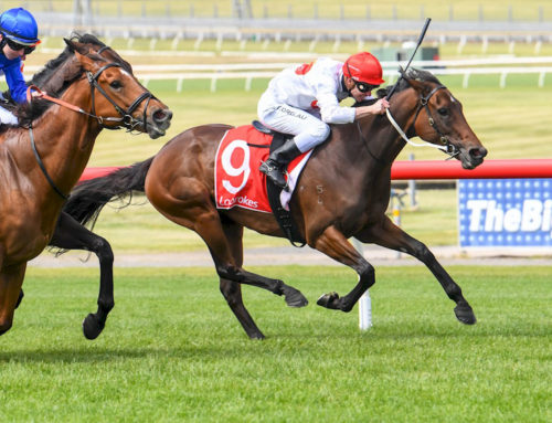 WRITTEN TYCOON'S DAUGHTERS ARE REAPING REWARDS FOR BREEDERS
